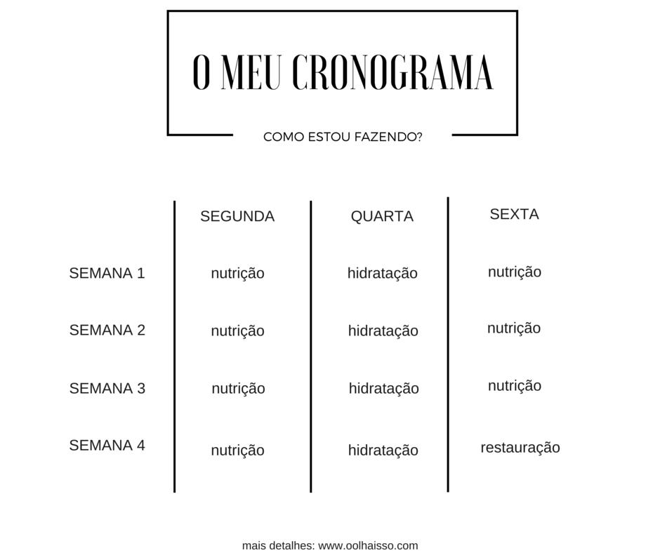 O MEU CRONOGRAMA capilar
